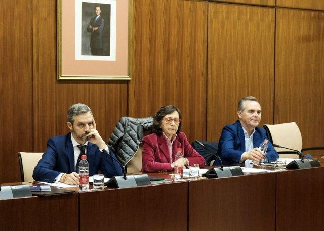El consejero de Hacienda, Juan Bravo, este miércoles durante su comparecencia en comisión parlamentaria.