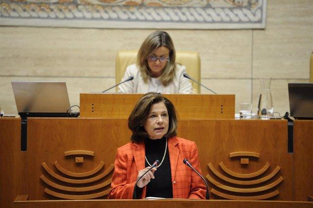 La vicepresidenta de la Junta y consejera de Hacienda, Pilar Blanco-Morales