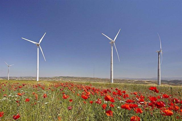 Parque eólico de Veladillo de Acciona en Navarra