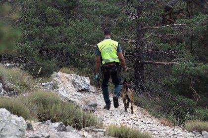 Buscan a una mujer desaparecida desde este miércoles en Torredelcampo (Jaén)
