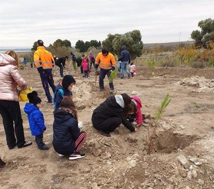 La DPZ se suma a la plantación colaborativa de la Comunidad #PorelClima con 12.500 pinos