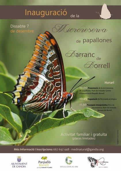 Gandia abre la primera microrreserva de mariposas de la Comunitat Valenciana en el paraje del Parpalló-Borrell