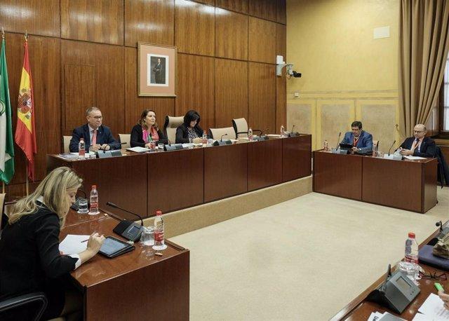 La consejera de Agricultura, Ganadería, Pesca y Desarrollo Sostenible, Carmen Crespo, en una comisión parlamentaria