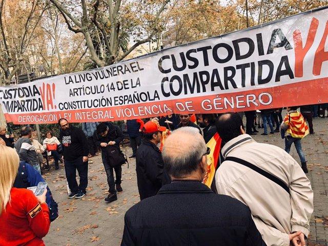 Pancarta contra la Ley de Violencia de Género, durante la manifestación en Barcelona a favor del Día de la Constitución, en la plaza Urquinaona el 6 de diciembre de 2019