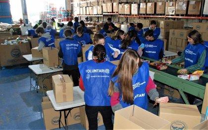 Alumnos de La Preu colaboran con la labor del Banco de Alimentos de Sevilla en los días previos a la Navidad