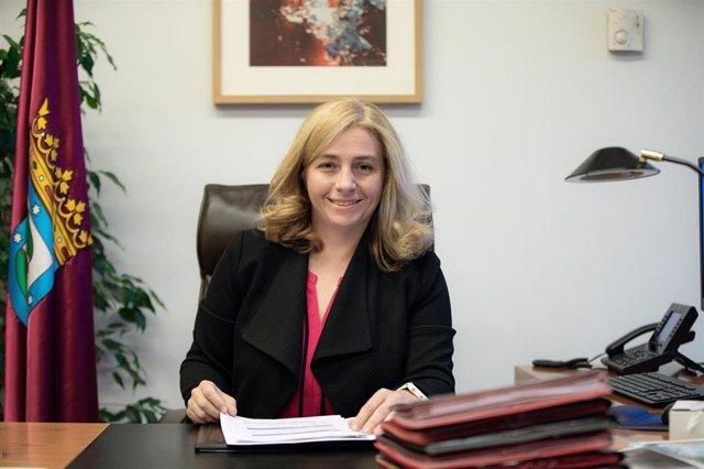 La portavoz del Gobierno municipal de Madrid y delegada del Área de Seguridad y Emergencias, Inmaculada Sanz Otero, es retratada durante una entrevista para Europa Press.