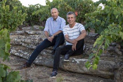 'Vinos Silenciosos', nueva guía para conocer en profundidad lo que anteriores libros han obviado sobre Rioja y sus vinos