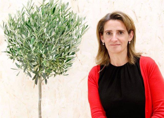 """COP25.- Teresa Ribera avanza que España manifestará su """"voluntad"""" de aumentar la"""