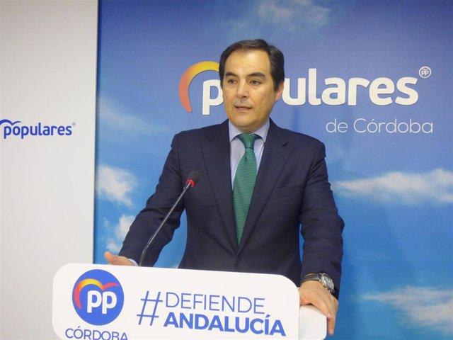 El portavoz del PP en el Parlamento de Andalucía, José Antonio Nieto, este domingo