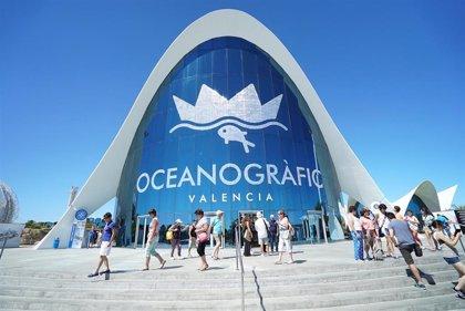 L'Oceanogràfic supera en noviembre el récord de 1,5 millones de visitantes