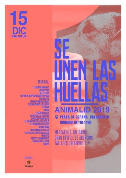 Protectoras de Valladolid se unen para concienciar sobre la responsabilidad con los animales en el evento 'Animalid'