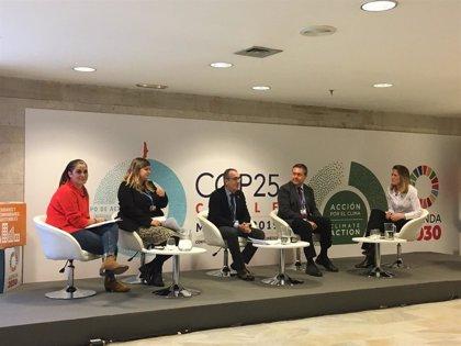 Yllanes reivindica en la COP25 la importancia de dotar de presupuesto la parte energética del REB