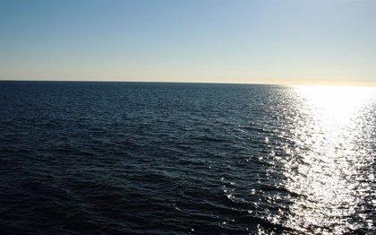 El carbono oscuro puede ocultar la escala de las zonas muertas marinas
