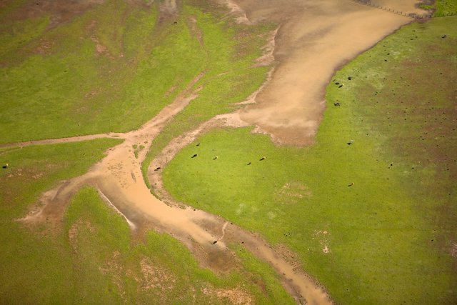 Imagen aérea de Doñana.