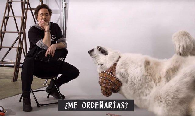 Robert Downey Jr. Protagoniza Las aventuras del Doctor Dolittle