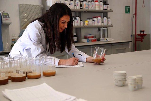 Una investigadora, en un laboratorio de la Universidad de Málaga.