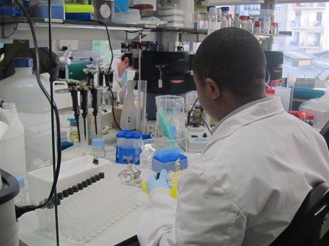 Investigació, laboratori, cincia