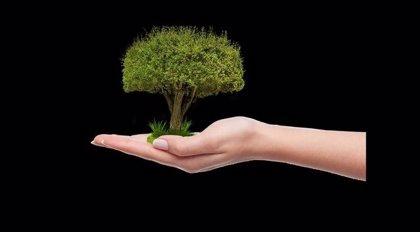 Alcaldes aragoneses se suman a la petición del Parlamento europeo y  plantarán un árbol antes del 5 de junio