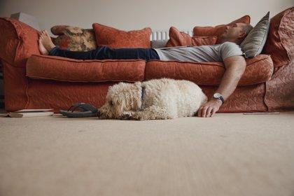 Confirman que echarse una siesta larga no es bueno para la salud