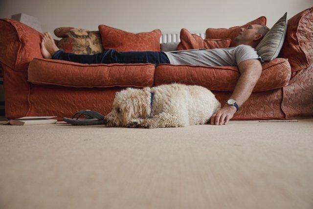 Hombre echándose la siesta en el sofá con su perro acompañándolo.