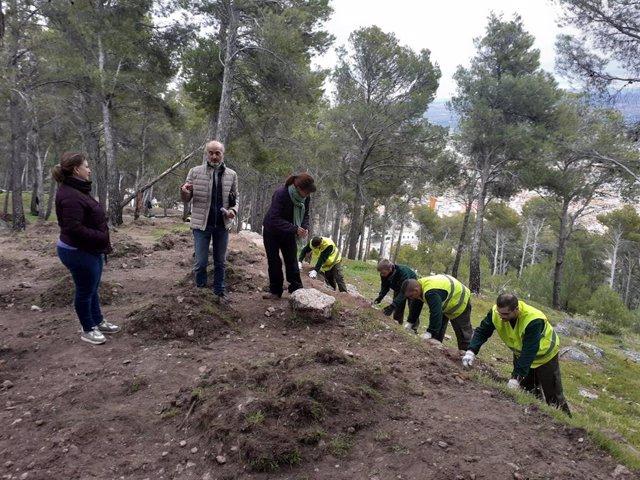 El proyecto de la Escuela Taller de recuperación del sendero islámico del cerro de Santa Catalina emplea a 15 personas.