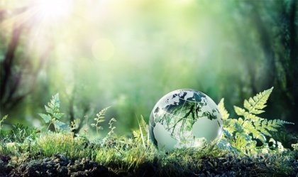 Cómo transmitir la conciencia medioambiental a los hijos