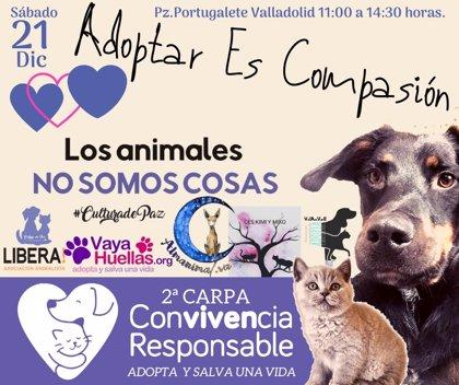 Libera! CyL y protectoras concienciarán sobre la convivencia responsable con los animales con una carpa en Valladolid