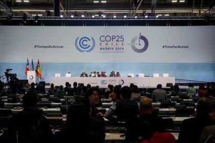 """ONG critican que los resultados de la Cumbre del Climano reflejan la opinión de la calle ni la """"verdad"""" de la ciencia"""