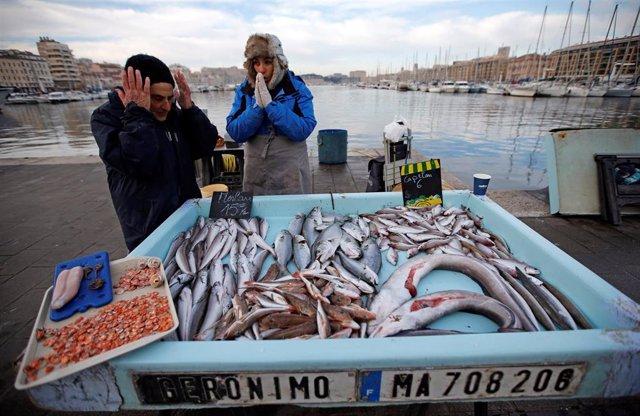 Pescadores comprueban el género en un puerto de Marsella.