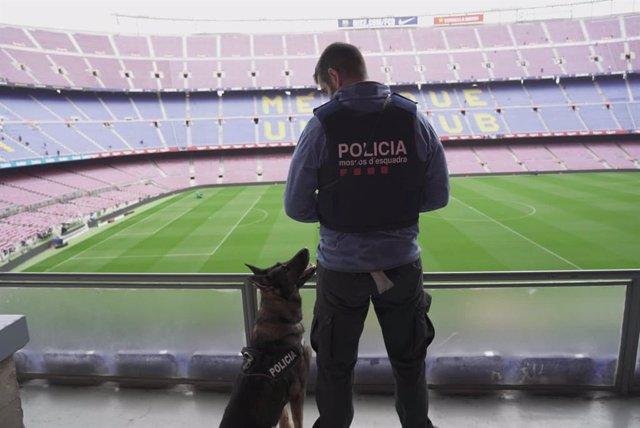 La unitat canina dels Mossos d'Esquadra al Camp Nou.