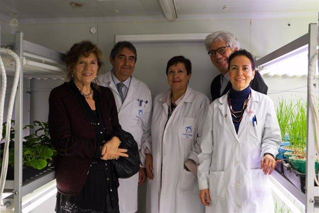 Imagen de los investigadores de la UGR que participan en el proyecto 'Excalibur'
