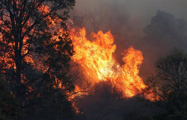 Incendios forestales en Queensland, Australia.