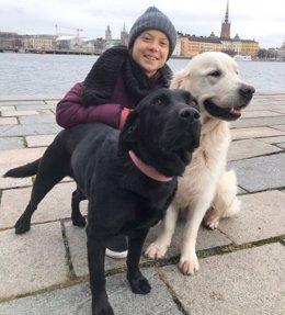 Greta Thunberg vuelve al Parlamento sueco para reclamar medidas contra el cambio