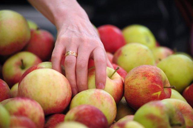 Manzanas. Fruta