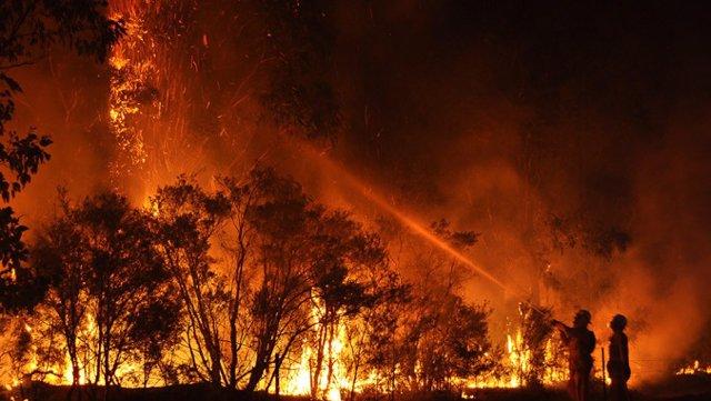 Incendi forestal a Austrlia
