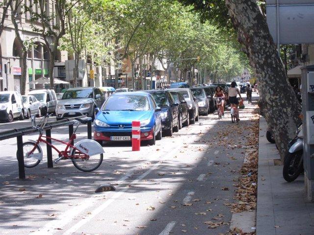 Carril bici de la Ronda Sant Pau de Barcelona