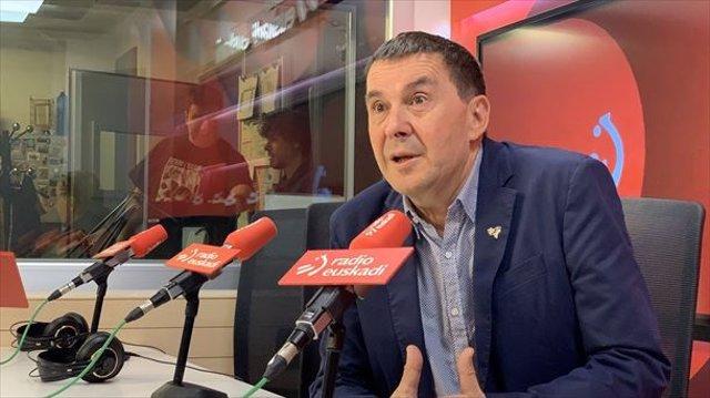 El coordinador general d'EH Bildu, Arnaldo Otegi, en una entrevista a Radio Euskadi