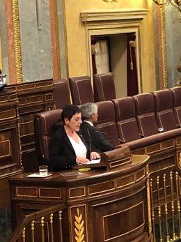 La portaveu d'EH Bildu Mertxe Aizpurua  intervé en el Ple del Congrés i el secretari quart de la Taula del Congrés, Alfonso Suárez Illana, li dóna l'esquena.