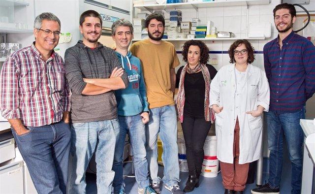 El Hospital Nacional de Parapléjicos y Universidad de Valladolid desarrollarán tecnología basada en biomateriales para la lesión medular.