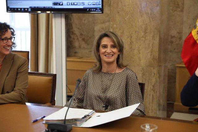 La ministra para la Transición Ecológica en funciones, Teresa Ribera (d), preside el Consejo Consultivo de Política Ambiental para Asuntos Comunitarios en la sede del Ministerio para la Transición Ecológica, un día después del término de COP25 en Madrid.