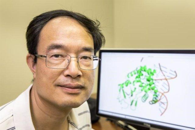Mecanismo responsable de cómo dos medicamentos antivirales ampliamente utilizados inhiben los virus