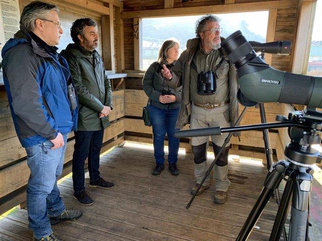 El consejero de Desarrollo Rural, Alejandro Calvo, visita uno de los grupos de trabajo que recogen información sobre el censo de aves en la ría de Villaviciosa