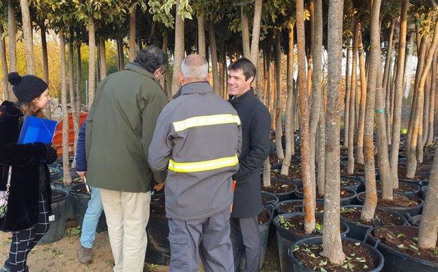 Nota De Prensa Y Foto Campaña Plantaciones
