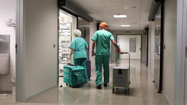 Los hospitales valencianos baten su récord histórico de donación con 255 donantes en 2019, un 6,7% más