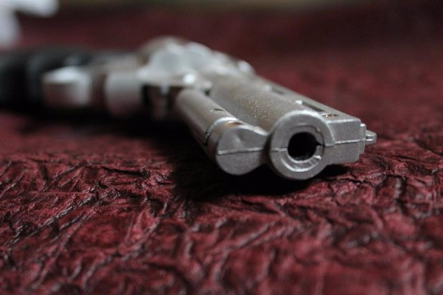 Las autoridades chilenas y la Polícia están preocupadas por el aumento progresivo del número de armas de fuego, especialmente las que no se encuentran regularizadas y perdidas, ya que uno de los objetivos del Gobierno es combatir con la delincuencia