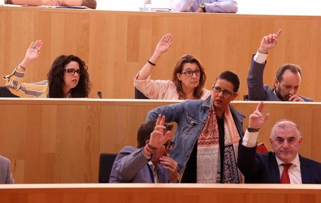 Votación en el pleno de la Diputación de Málaga en 2019