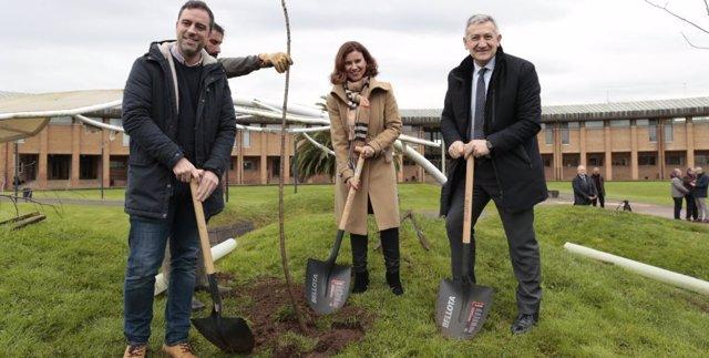 Plantación de árboles durante la presentación del proyecto ambiental en el campus gijonés de la Fundación EDP y la Universidad de Oviedo