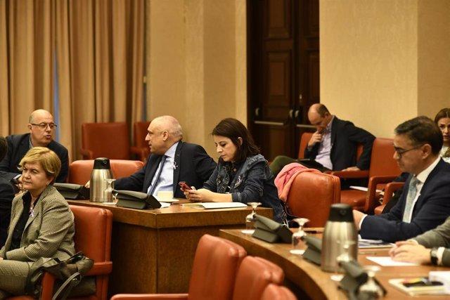 La portavoz del PSOE en el Congreso de los Diputados, Adriana Lastra, consulta el móvil, durante la reunión de la Diputación Permanente del Congreso
