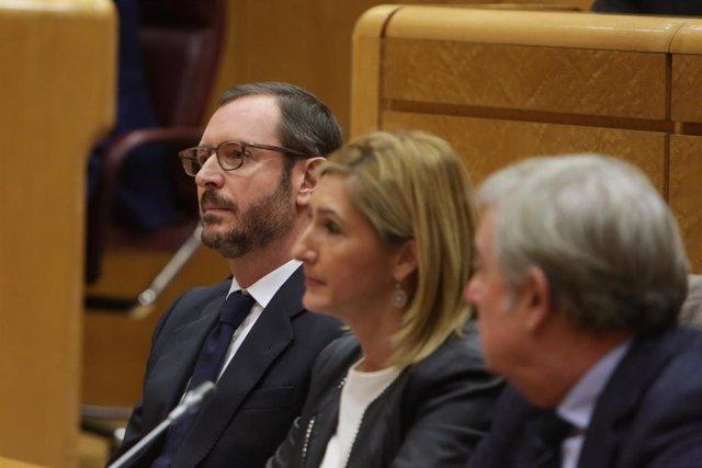 AMP.- PP ve grave que el Consejo de Ministros coincida con los Plenos en las Cor