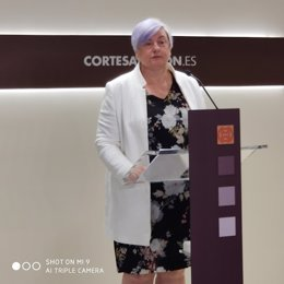 La diputada del PP, Pilar Gayán.